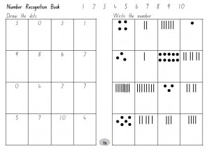 Number Recognition workbook